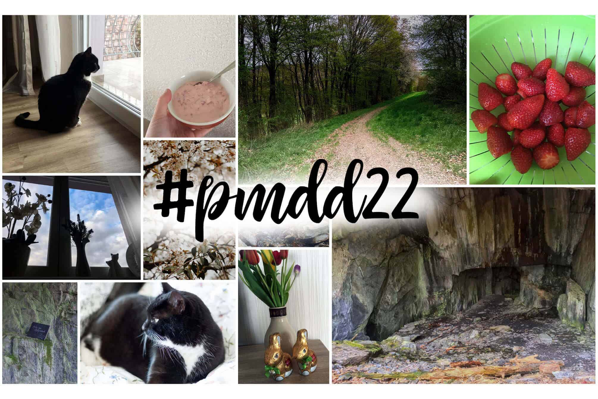 pmdd22 - Picture my Day Day Nummer 22