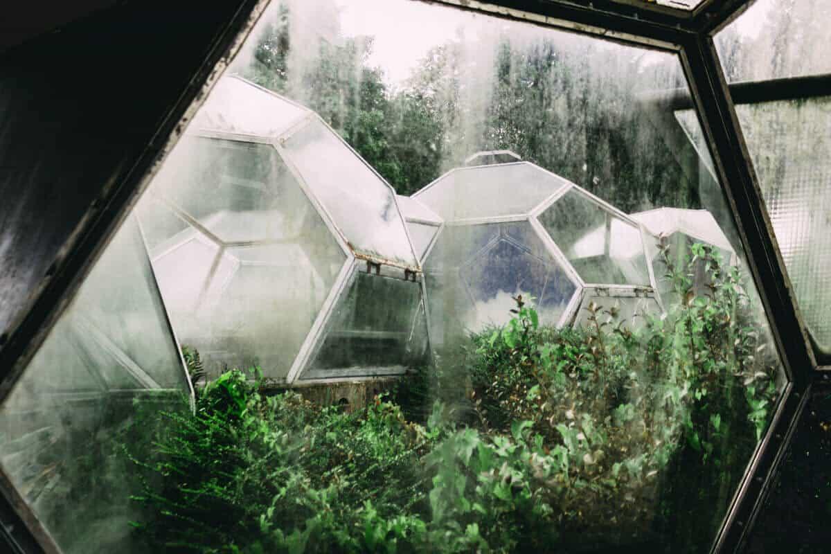Blick auf die Kuppelgewächshäuser
