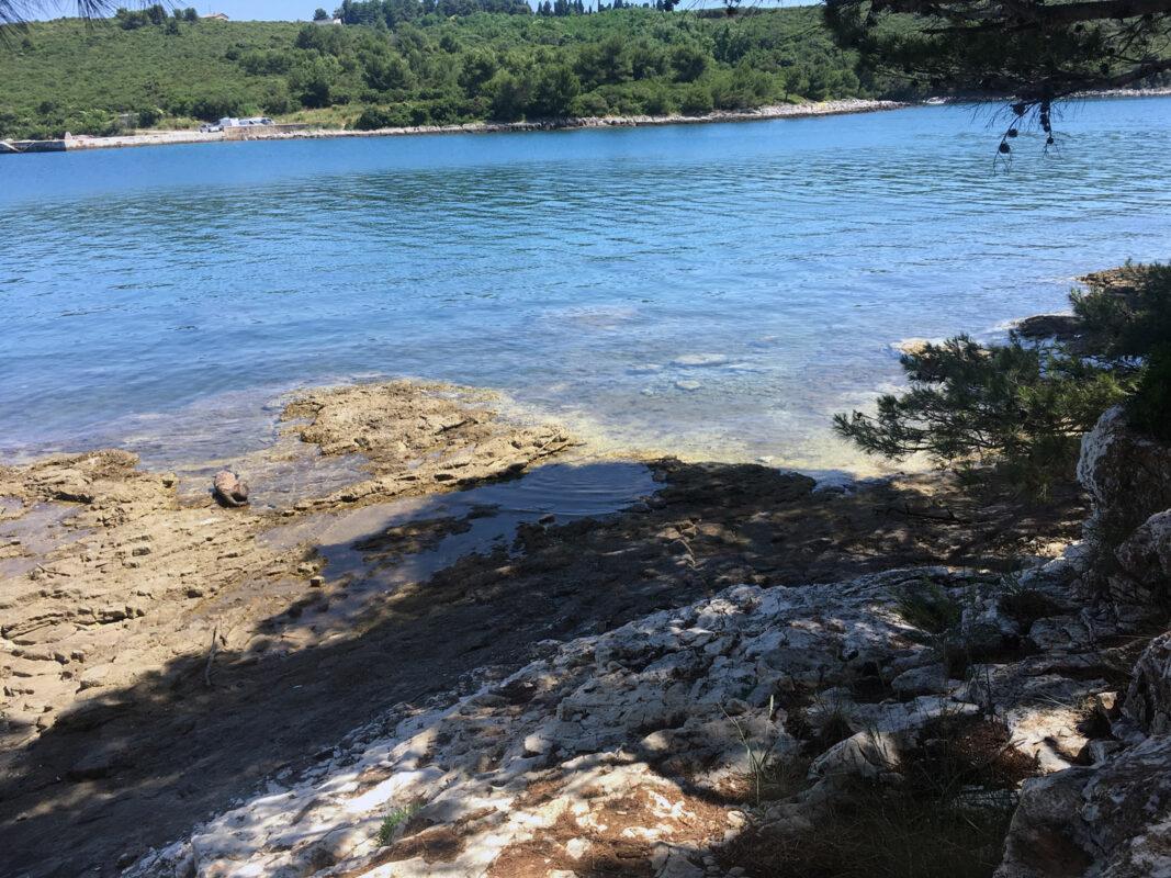Der Strand in Banjole Kroatien